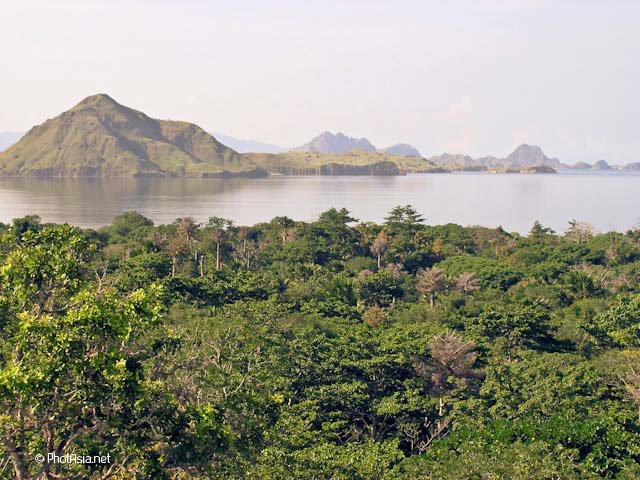 Komodo Island, Komodo National Park, Indonesia